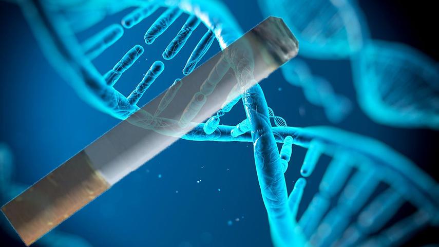 Fumatul produce schimbări în structura ADN-ului. VEZI STUDIUL