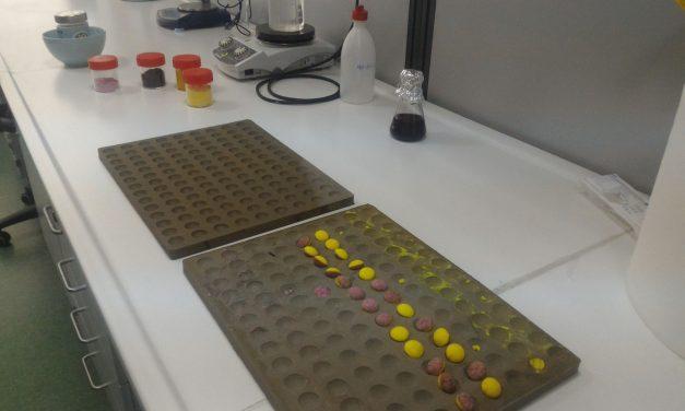 Cum a inventat o studentă din Cluj bomboanele care protejează organismul de cancer. Conțin turmeric și afine
