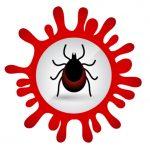 Aplicație care oferă informații despre zeci de specii de căpușe și țânțari de pe teritoriul României. Aplicația e dezvoltată de cercetători ai USAMV Cluj
