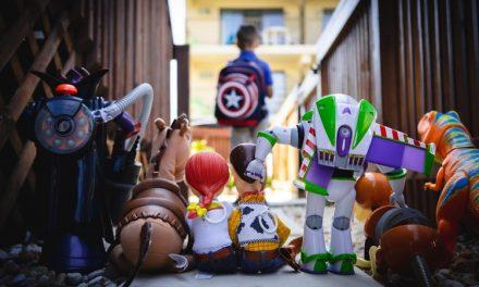 Cat de importante sunt jucăriile în universul unui copil și cum le alegem pe cele potrivite: multe diverse și alese după placul copiilor sau mai puține, dar de calitate și educative?