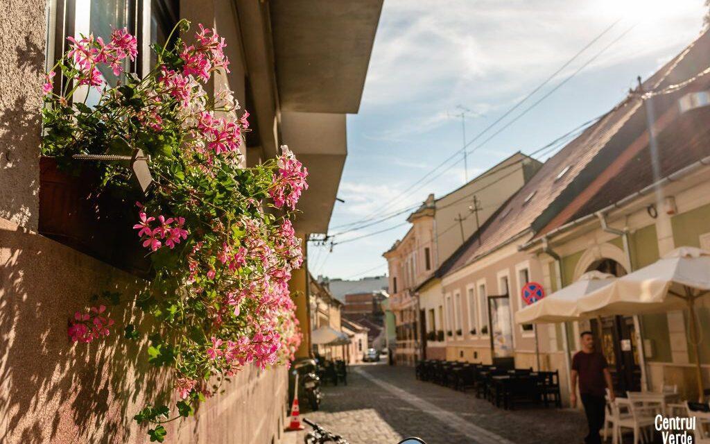 Încă o stradă din Cluj transformată într-o zonă verde, ca în Vest. Inițiatorul proiectului Centrul Verde este Andi Daisler